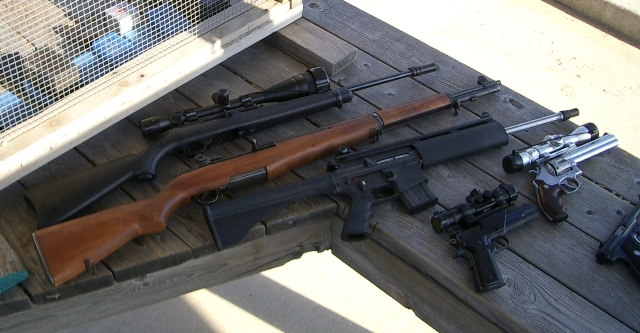 a collection of firearms