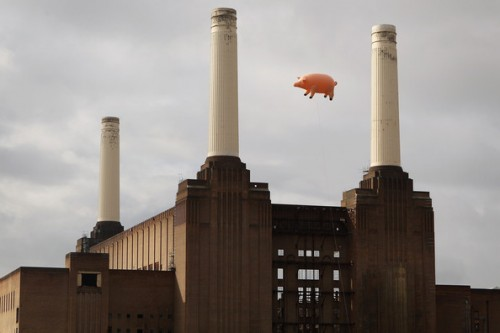 Flying+Pig+Recreates+Pink+Floyd+Album+Cover+WPqoHUP18F9l