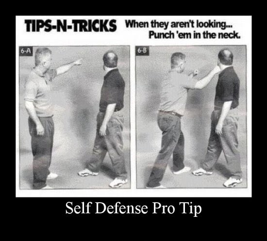 5770_1292_500_Self-Defense-Pro-Tip
